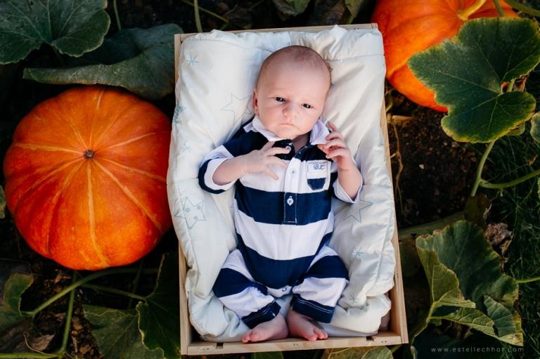 photos de nouveau-né en extérieur
