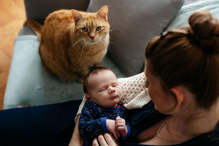 photographe bébé domicile montpellier